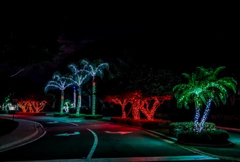 Christmas Lights La Cresta